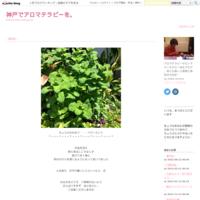 ☆100均しばりの紫陽花リース☆ - 神戸でアロマテラピーを。