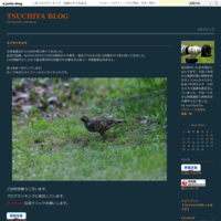 奄美大島の野鳥 4K動画 - TSUCHIYA BLOG
