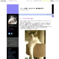 業界初?!! - ドン・小太郎・コルリオーネ、愛と猫缶の日々