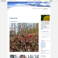 収穫の秋、イノシシの秋 - 農と自然のさんぽみち・やまだ農園日記