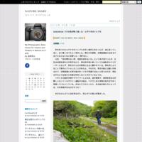 20210320 コナラ林の散歩道:ミヤマセセリ初見 - NATURE DIARY