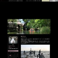 関宿・街道まつり - 風の吹くまま何でもシャッター