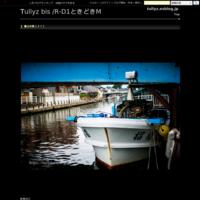 蓼科高原(36) - Tullyz bis /R-D1ときどきM