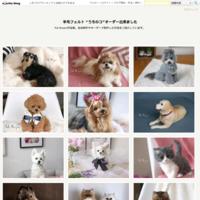 """【2107221】猫キャリコ長毛種 - 羊毛フェルト """"うちのコ""""オーダー出来ました"""