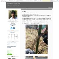 浴室のリフォーム - nagahama-archi.com