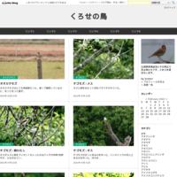 ヤマセミ - くろせの鳥