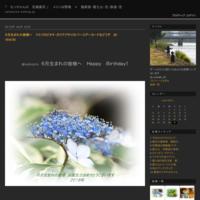 撮り鳥が撮り蝶になるの巻にらの花とシジミチョウ・セセリ2021/9/8 Tokyo - むっちゃんの花鳥風月  ( 鳥・猫・花・空・山 )