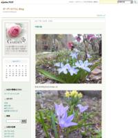 ブログ移転のお知らせ - ガーデンひぐらし Blog