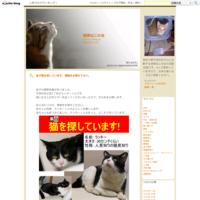 【正式譲渡決定!】さくらちゃん&エドちゃん - 湘南ねこの会