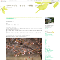 乗鞍高原の水芭蕉(5月15日) - オーベルジュ イマイ ~乗鞍 Diary~