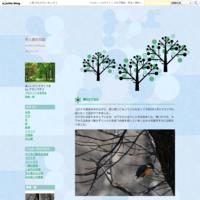 石狩間ウニの丘の鳥たち - 花と旅の日記