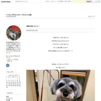 店長の日記〜梅雨〜 - トリミングサロンオリーブスタッフ日記