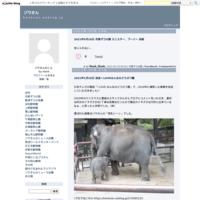 ゾウさんの謎 2017年2月 - ゾウさん