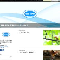 レンズピローの安定性検証 - PhotoStudioオオタケ