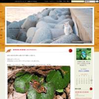 ネアカヨシヤンマ♂&オニヤンマ♀(2019年8月22日) - みき♂の虫撮り友人帖