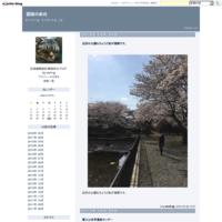 富士山世界遺産センター - 図面の余白
