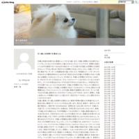 婚活サイト - 辰七MEMO