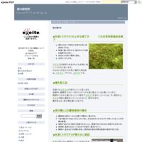苔の育て方 - 苔の研究所