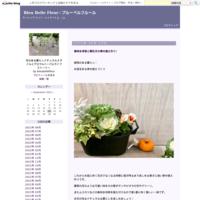 白い薔薇の咲く庭 - Bleu Belle Fleur☆ブルーベルフルール