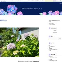 民泊 - Persimmon☆パーシモン