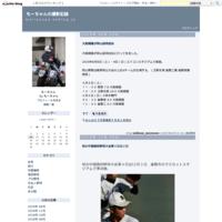 第89回都市対抗野球大会の岡山県・島根県予選に観戦してきました。 - もーちゃんの撮影記録