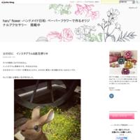 インスタグラム更新&ブログについて - haru* flower -ハンドメイド日和-  ペーパーフラワーで作るオリジナルアクセサリー 掲載中