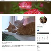 「新参猫クロの紹介」ビデオ - 猫と自然と散歩の日々