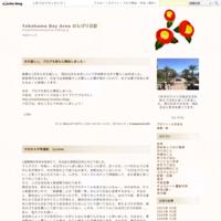 産後の運動 - Yokohama Bay Area のんびり日記