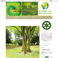 ブログをお引越ししました - ワンダーリビング 女性客がリラックスするマーケティング戦略インテリアブログ