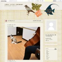 第40回練馬児童合唱団演奏会 - しまむら・ユニクロ・ときどきGAP
