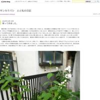 4月開店スケジュールと一輪挿し紹介④ - サンカクバシ 土と私の日記