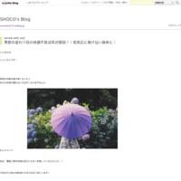 これから気になる紫外線☀︎ - SHOCO's Blog