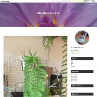 アジアンタムpart4 - Mini Botanical Life