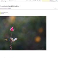 この距離 - Anmiphotodiary2021's Blog