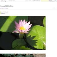 jibunn - Ayaragi1234's Blog