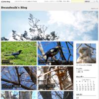 キジバト伊達市・長流川 - Bwandwalk's Blog