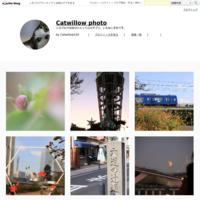 枡形山展望台の楽しみ方〰︎俯瞰〰︎ - Catwillow  photo