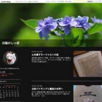 靭公園(大阪府大阪市)とバラ園 - 白狐のしっぽ