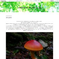 ボタンイボタケ - 工場菌務の菌勉人間によるきのこ図鑑