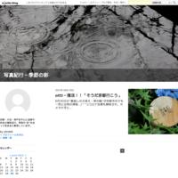 otti468~復活!!「そうだ京都行こう」 - KYOTO写真紀行~季節の彩