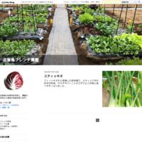 トリプル癌闘病記1 - 倭国物語