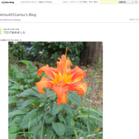 今日も来ました分区園♪ - 鶴見分区園花壇クラブブログ