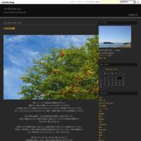 八重の向日葵 - ソナチネアルバム