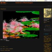 late summer morning - 風の随に...     fudeen's Photologue