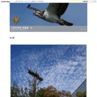 台風一過 - 下坂中学校 写真部 Ⅱ