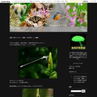 京都西山自然歩道で昆虫探し2 他の生き物たち - 自然の写真帖