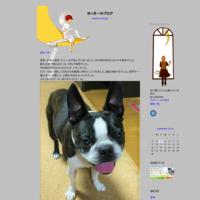 あっちゃん - ゆっきーのブログ