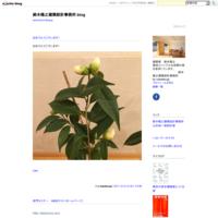 8人の建築家展2017栃木 「ありがとうございました!」 - 鈴木隆之建築設計事務所 blog