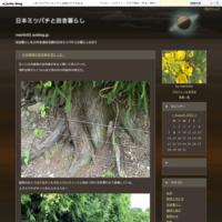 菊芋の収穫 - 日本ミツバチと田舎暮らし