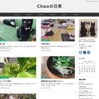 インスタ - Chaoの日常